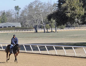 Aiken Training Track